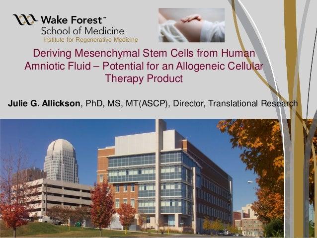 Institute for Regenerative Medicine Deriving Mesenchymal Stem Cells from Human Amniotic Fluid – Potential for an Allogenei...