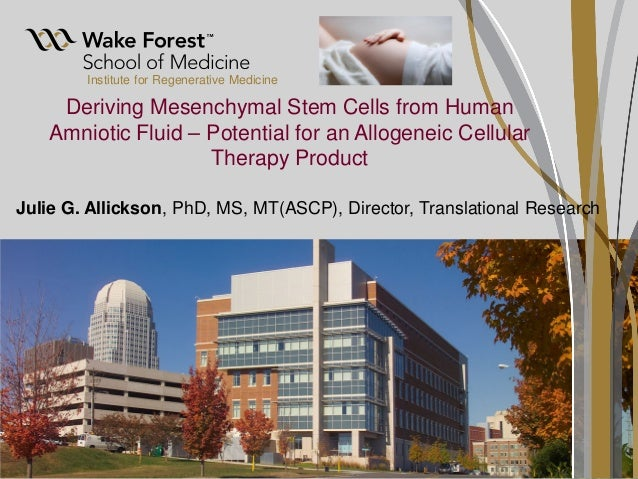 Deriving Mesenchymal Stem Cells from Human Amniotic Fluid – Potential for an Allogeneic Cellular Therapy Product