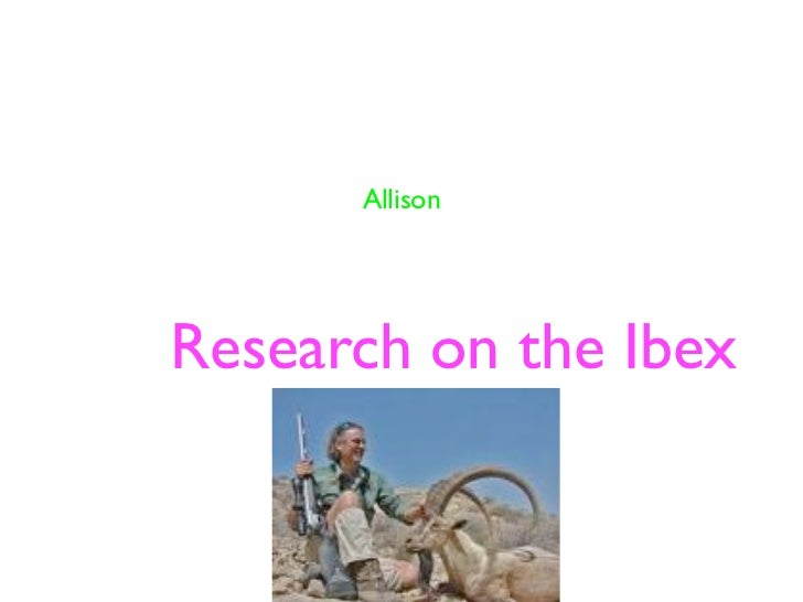 AllisonResearch on the Ibex