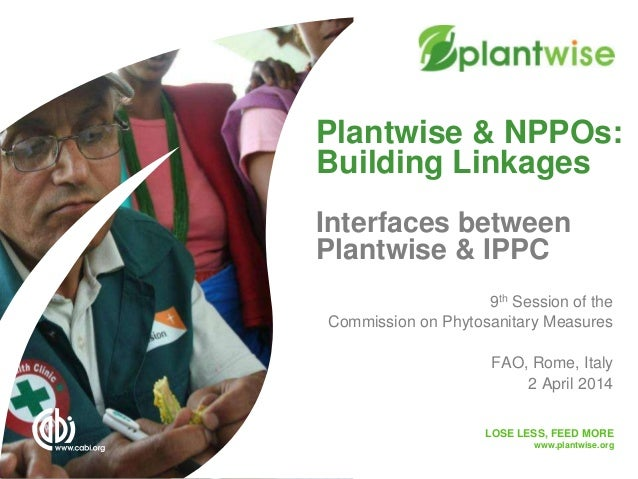 LOSE LESS, FEED MORE www.plantwise.org Plantwise & NPPOs: Building Linkages Interfaces between Plantwise & IPPC 9th Sessio...