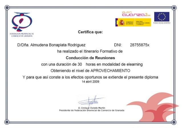 Avanza2 - Curso conducción de reuniones - 2009 certificado