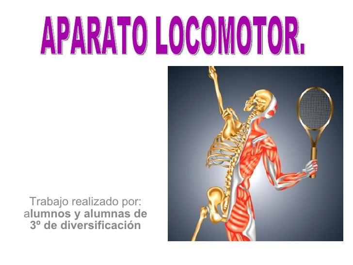 Trabajo realizado por: a lumnos y alumnas de 3º de diversificación APARATO LOCOMOTOR.