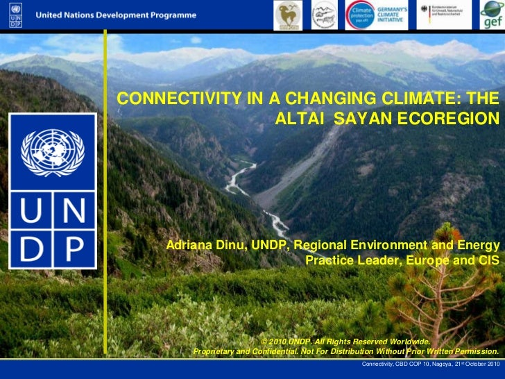 CONNECTIVITY IN A CHANGING CLIMATE: THE ALTAI  SAYAN ECOREGION <br />Adriana Dinu, UNDP, Regional Environment and Energy P...