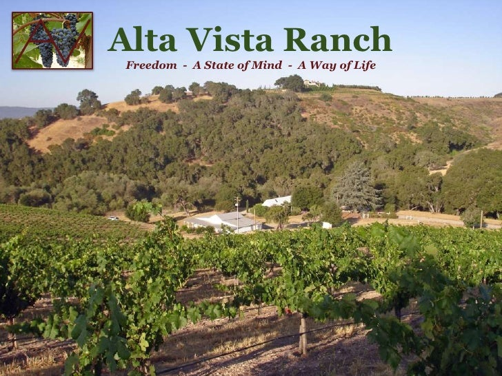 Alta Vista Ranch Vineyards 9 19 09