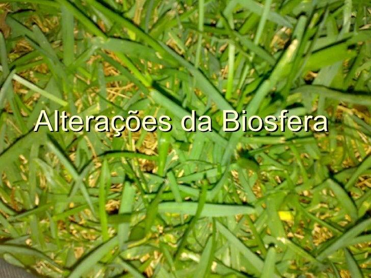 Alterações da Biosfera