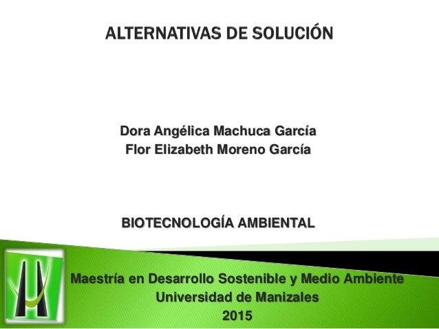 Dora Angélica Machuca García Flor Elizabeth Moreno García BIOTECNOLOGÍA AMBIENTAL Maestría en Desarrollo Sostenible y Medi...