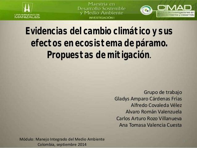 Evidencias del cambio climático y sus efectos en ecosistema de páramo. Propuestas de mitigación. Grupo de trabajo Gladys A...
