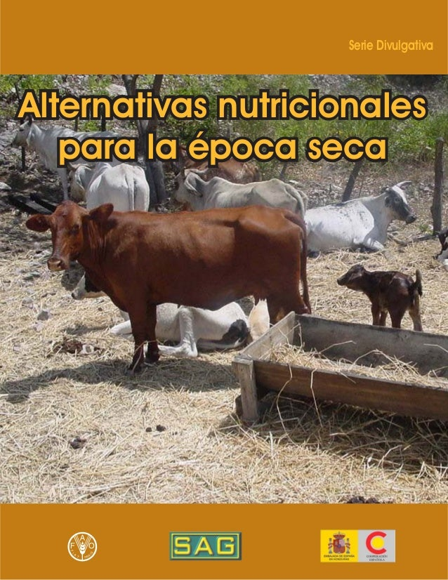 Serie DivulgativaAlternativas nutricionalespara la época secaAlternativas nutricionalespara la época secaAlternativas nutr...