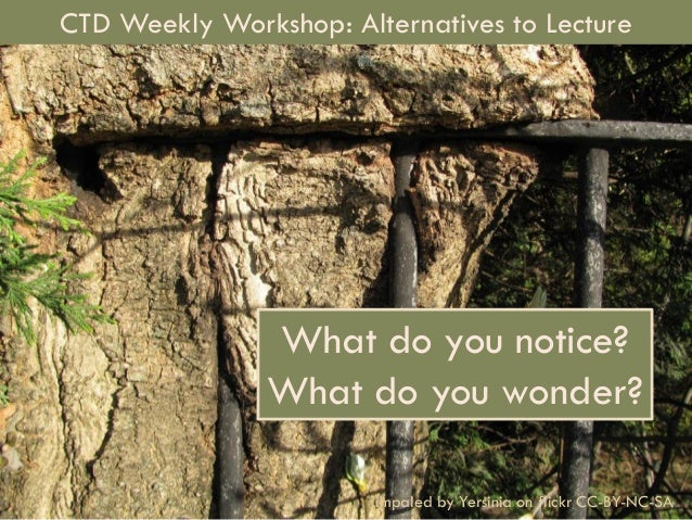 Alternatives to Lecture1 What do you notice? What do you wonder? impaled by Yersinia on flickr CC-BY-NC-SA CTD Weekly Work...