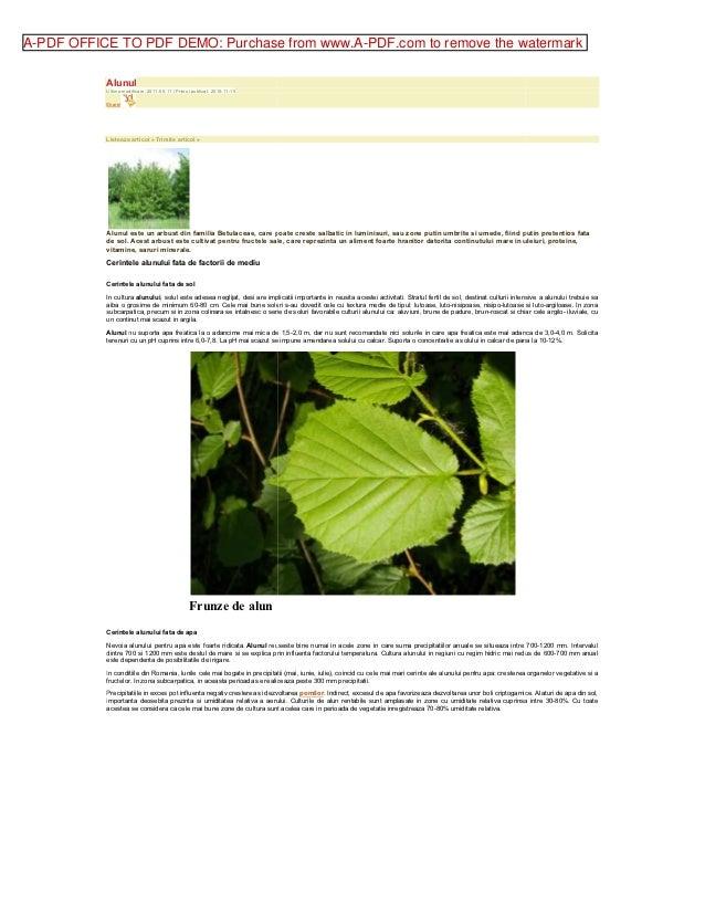 A-PDF OFFICE TO PDF DEMO: Purchase from www.A-PDF.com to remove the watermark           Alunul           Ultima modificare...