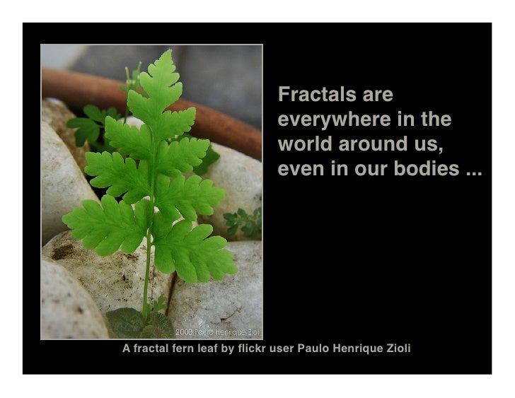 Fractals are                              everywhere in the                              world around us,                 ...