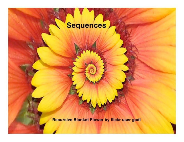 Sequences     Recursive Blanket Flower by flickr user gadl