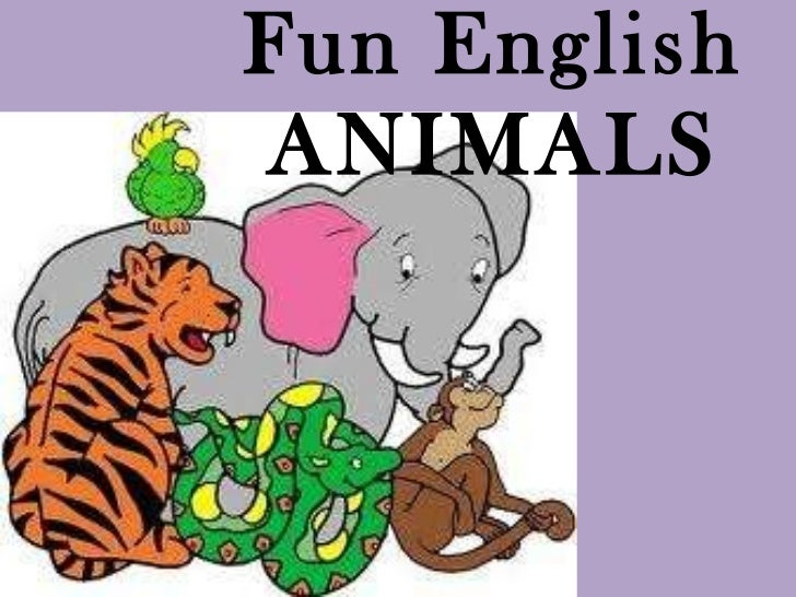 Fun English ANIMALS