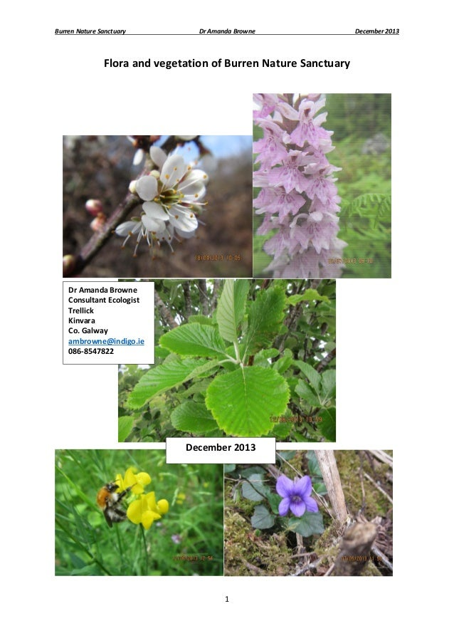 BNS Botanical survey