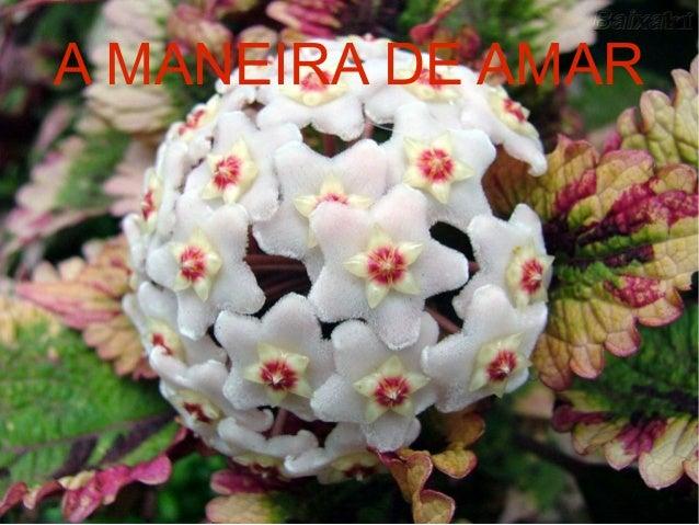 A MANEIRA DE AMAR