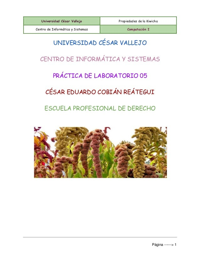 Universidad César Vallejo Propiedades de la Kiwicha Centro de Informática y Sistemas Computación I Página ------> 1 UNIVER...