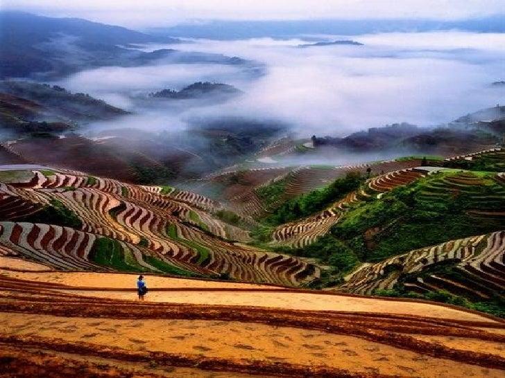 Maravilhosa China