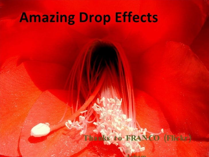 Amazing Drop Effects Thanks to FRANCO (Flickr) Arham