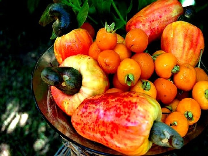 Colours of Fruits
