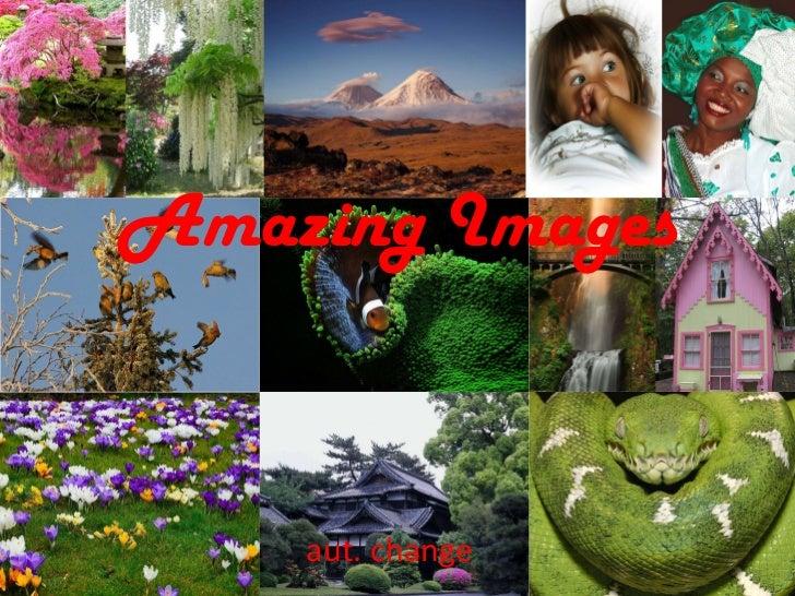 Amazing   Images aut. change