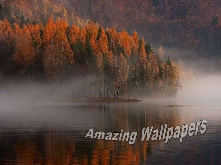 Amazing wallpapers (catherine)