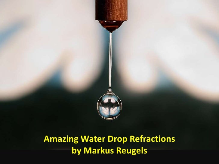 Amazing water drop refractions by markus reugels