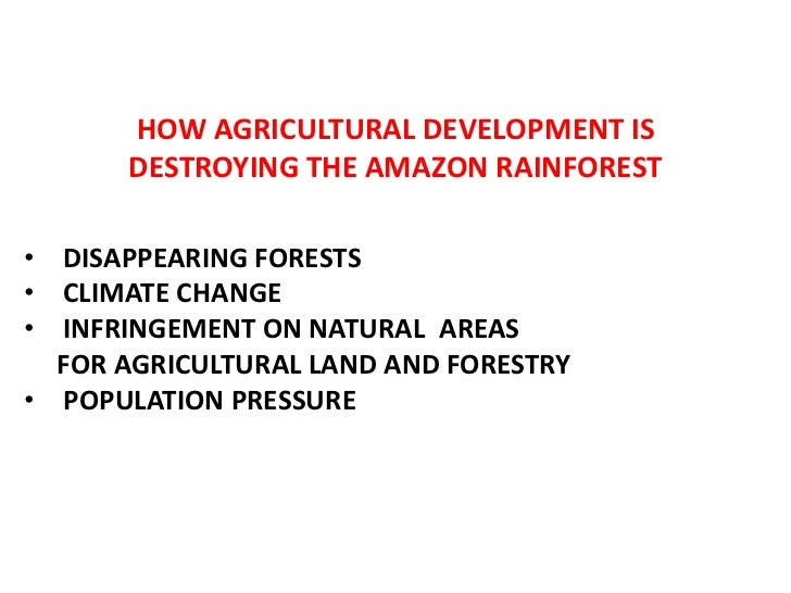 HOW AGRICULTURAL DEVELOPMENT IS DESTROYING THE AMAZON RAINFOREST<br /><ul><li>DISAPPEARING FORESTS