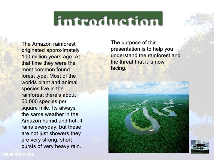 rain forest destruction essay The free environment research paper (rainforest destruction essay) presented on this page should not be viewed as a sample of our on-line writing service if you need fresh and competent research / writing on environment, use the professional writing service offered by our company.