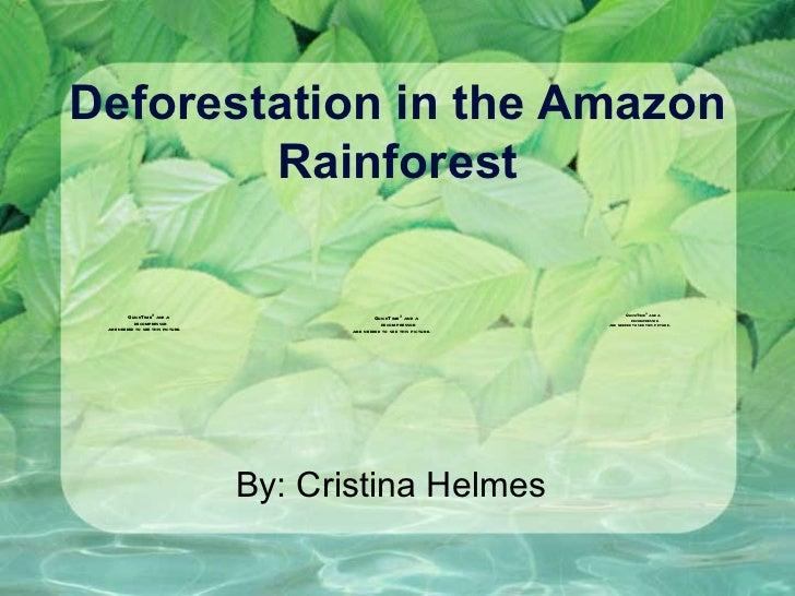 deforestation research essays