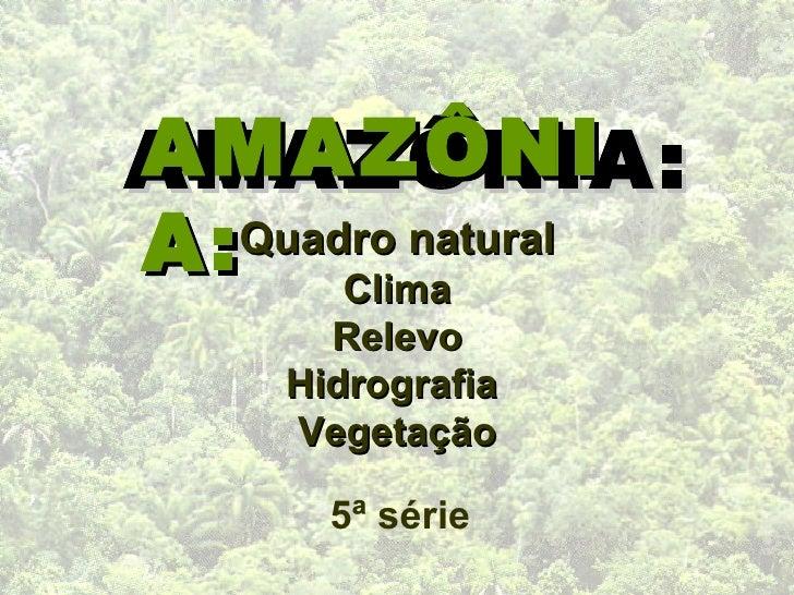 AMAZÔNIA: AMAZÔNIA: Quadro natural Clima Relevo Hidrografia  Vegetação 5ª série