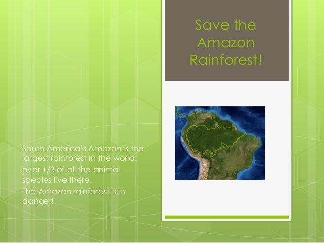 Save the Amazon Rainforest! South America's Amazon is the largest rainforest in the world: over 1/3 of all the animal spec...