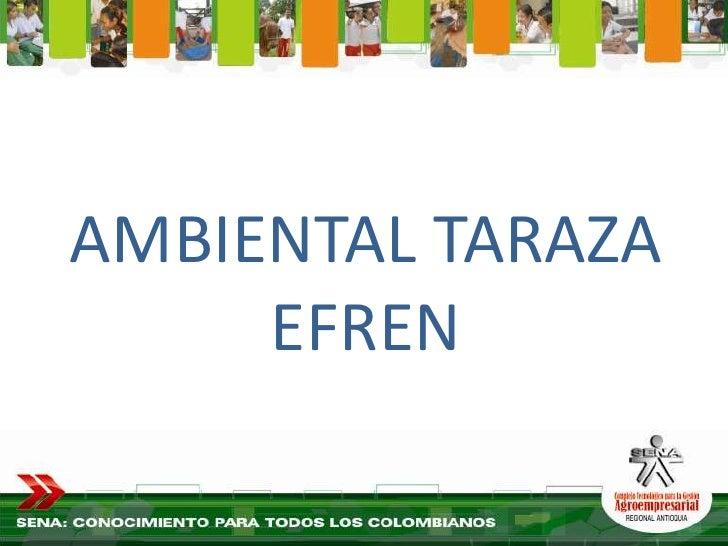 Ambiental Taraza Efren