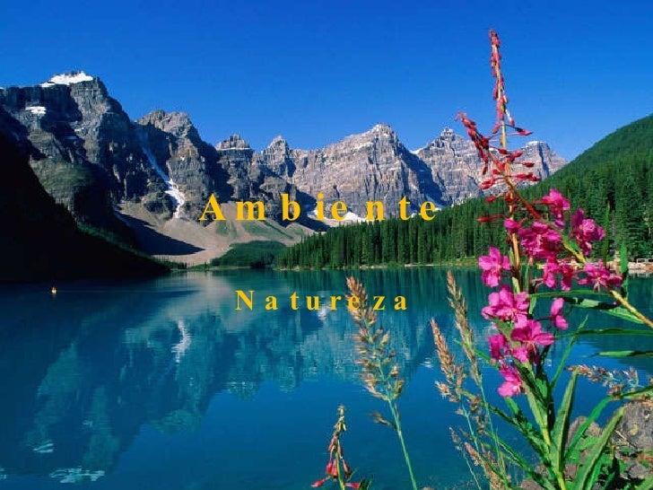 Ambiente Natureza