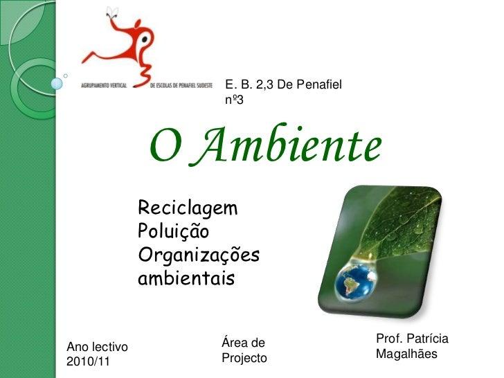 E. B. 2,3 De Penafiel nº3<br />O Ambiente<br />Reciclagem<br />Poluição<br />Organizações ambientais<br />Prof. Patrícia M...
