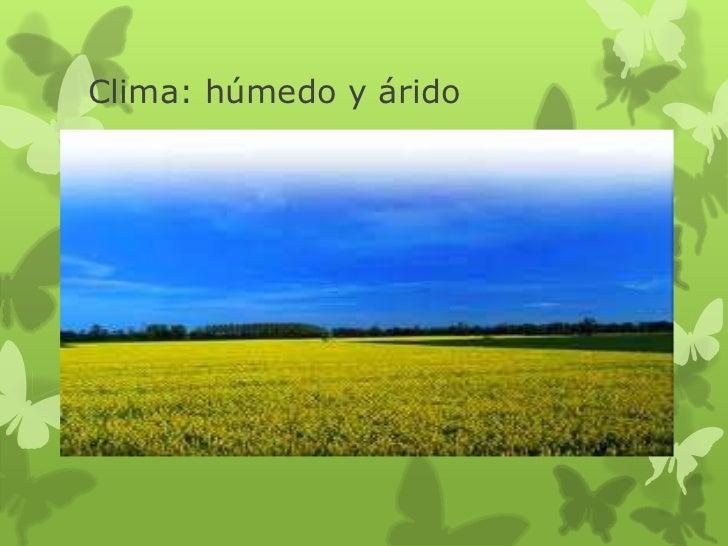 Ambiente de las llanuras de argentina for Ambientes de argentina
