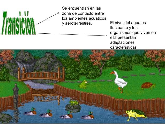 Ambientes 8 for Ambientes de argentina