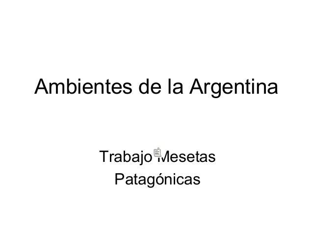 Ambientes de la argentina mesetas patag nicas for Ambientes de argentina