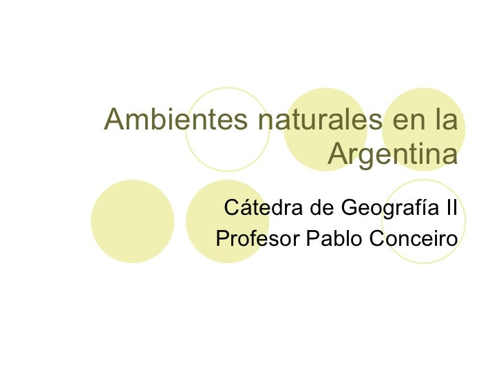 Ambientes naturales en la Argentina Cátedra de Geografía II Profesor Pablo Conceiro