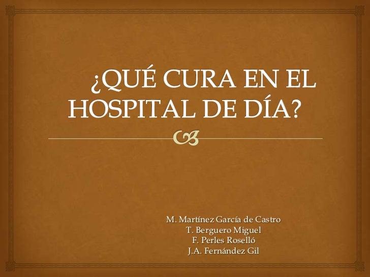 M. Martínez García de Castro    T. Berguero Miguel     F. Perles Roselló    J.A. Fernández Gil