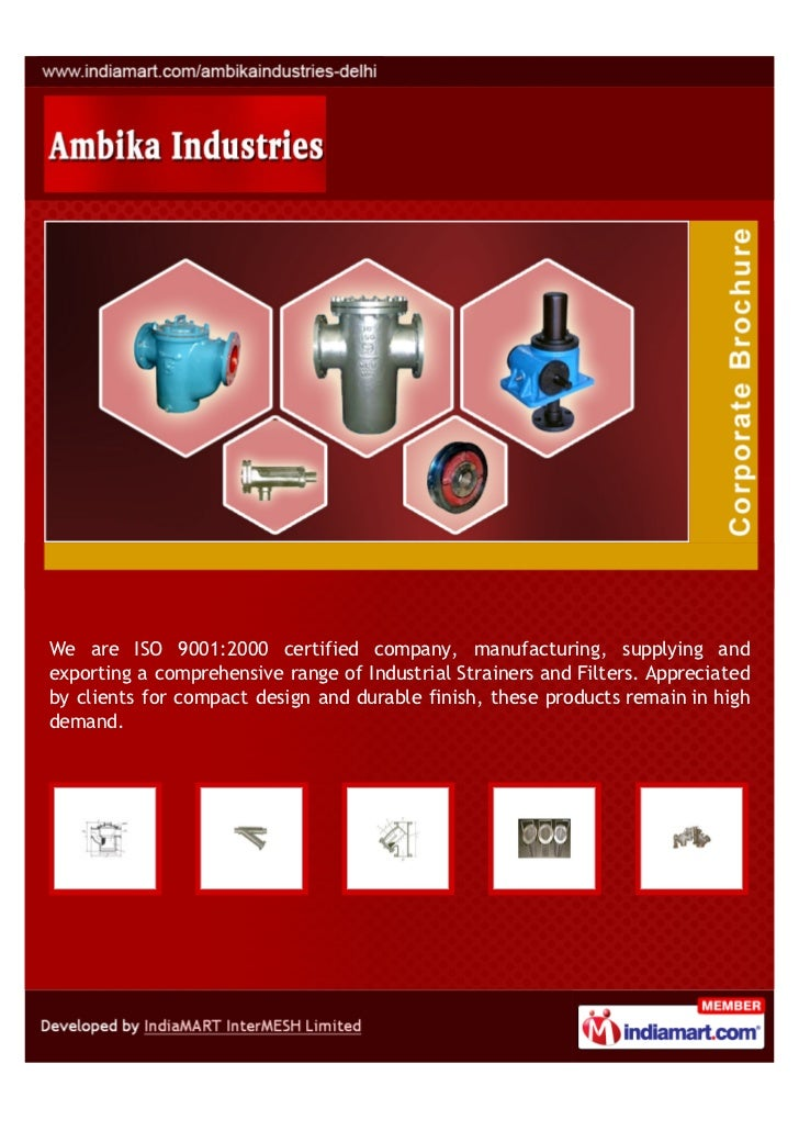 Ambika Industries, New Delhi, Industrial Strainers And Filters