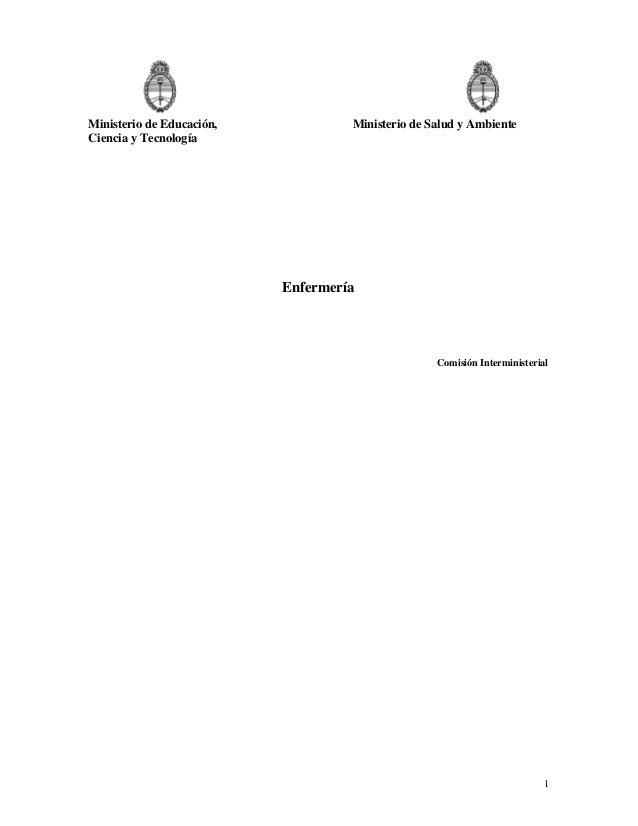 Ministerio de Educación, Ciencia y Tecnología  Ministerio de Salud y Ambiente  Enfermería  Comisión Interministerial  1