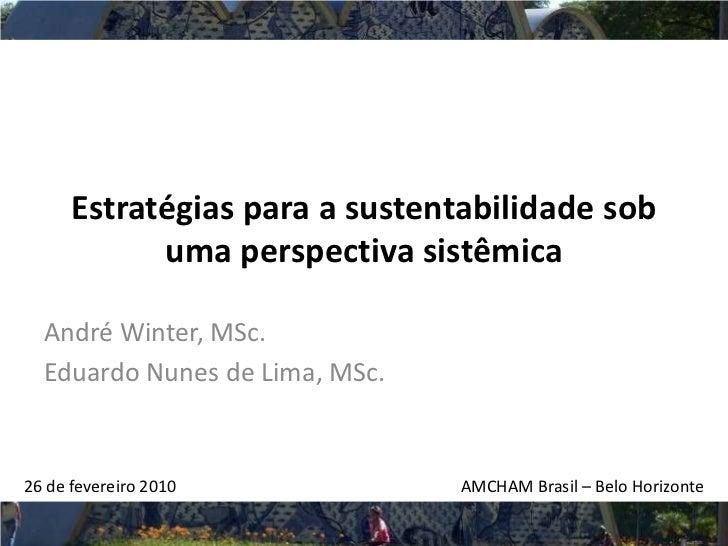 Estratégias para a sustentabilidade sob             uma perspectiva sistêmica    André Winter, MSc.   Eduardo Nunes de Lim...
