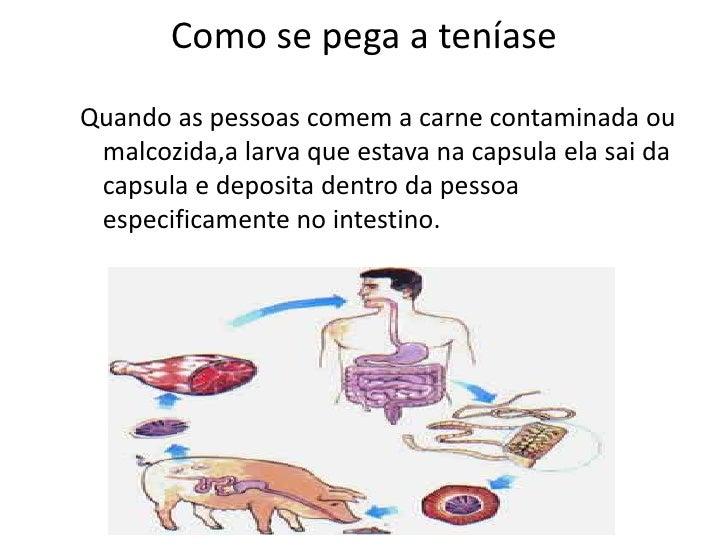 Vermes helminths sinais da sua existência em um organismo