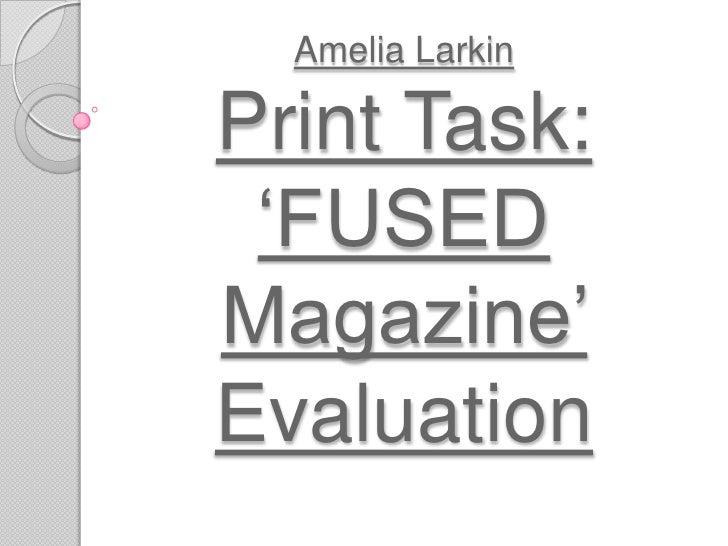 Amelia Larkin Evaluation Presentation