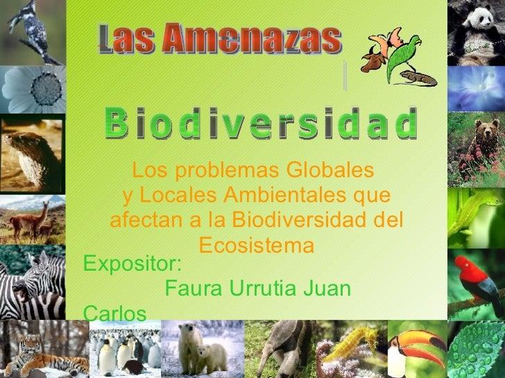 Los problemas Globales  y Locales Ambientales que afectan a la Biodiversidad del Ecosistema Las Amenazas  a la  Biodiversi...