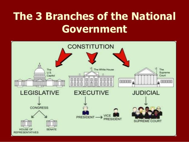 "the three branches of congress Today's ""separation of powers"" is no longer between the three original, constitutionally created, branches of government, but between, on the one hand, a branch consisting of the president, his supporters in congress and their mutual supporters on the federal bench and on the other hand, a branch made up of the party in opposition to the."