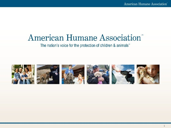 American Humane Association - Policy priorities and data needs regarding the protection of children