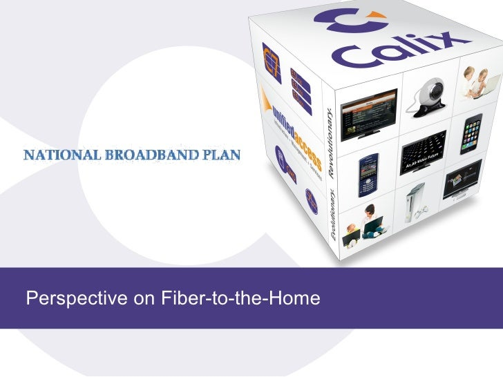 Perspective on Fiber-to-the-Home