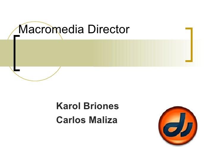 Macromedia Director Karol Briones Carlos Maliza