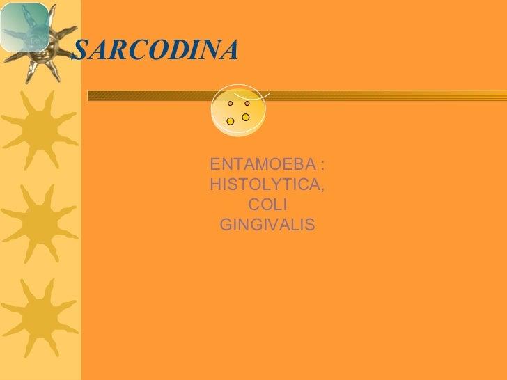 SARCODINA ENTAMOEBA : HISTOLYTICA, COLI GINGIVALIS